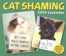 Cat Shaming 2019 Day-to-Day Calendar, Calendar Book