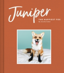 Juniper: The Happiest Fox, Hardback Book