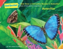 How does a caterpillar become a butterfly? : And other questions about butterflies, Paperback Book
