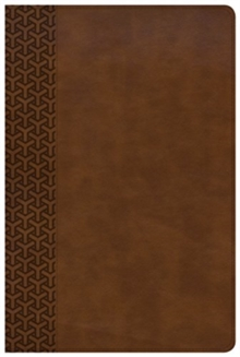 KJV Everyday Study Bible, British Tan LeatherTouch, Leather / fine binding Book