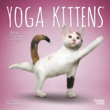 Yoga Kittens 2019 Mini Wall Calendar, Calendar Book