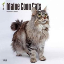 MAINE COON CATS 2018 WALL CALENDAR,  Book