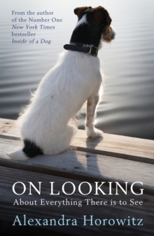 On Looking : About Everything There is to See, Paperback Book