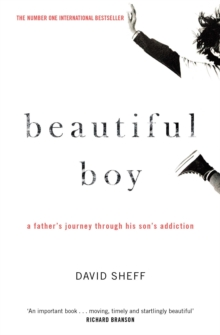 Beautiful Boy : A Father's Journey Through His Son's Addiction, Paperback / softback Book