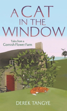 A Cat in the Window : Tales from a Cornish Flower Farm, Paperback Book
