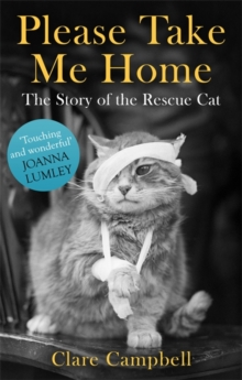 Please Take Me Home : The Story of the Rescue Cat, Paperback Book