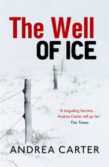 The Well of Ice, Paperback Book