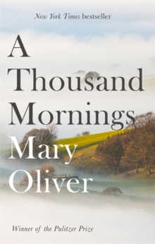A Thousand Mornings, Paperback / softback Book