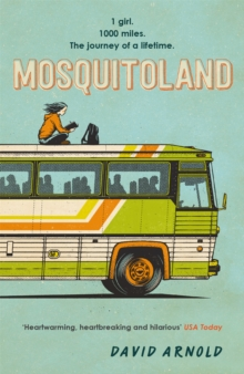 Mosquitoland, Paperback Book