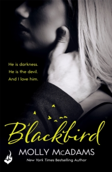 Blackbird : A story of true love against the odds, Paperback Book