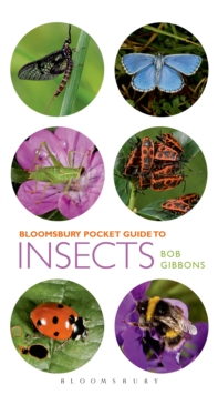 Pocket Guide to Insects, Paperback / softback Book