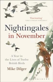 Nightingales in November : A Year in the Lives of Twelve British Birds, Paperback Book