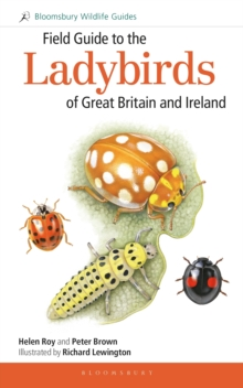 Field Guide to the Ladybirds of Great Britain and Ireland, Paperback / softback Book