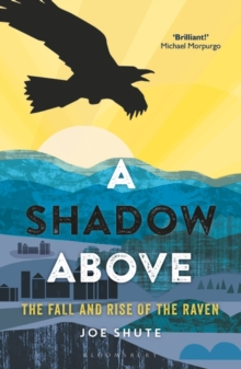 A Shadow Above : The Fall and Rise of the Raven, Hardback Book