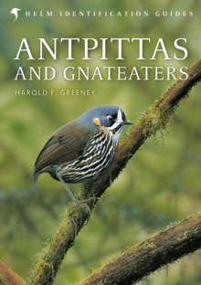 Antpittas and Gnateaters, PDF eBook