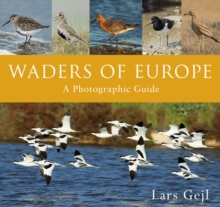 Waders of Europe, Hardback Book