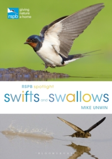 RSPB Spotlight Swifts and Swallows, Paperback / softback Book