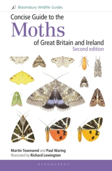 Concise Guide to the Moths of Great Britain and Ireland: Second edition, Spiral bound Book