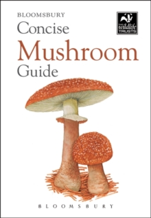 Concise Mushroom Guide, Paperback / softback Book