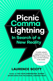 Picnic Comma Lightning : In Search of a New Reality, EPUB eBook