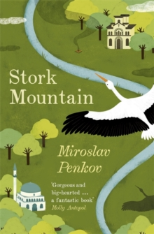 Stork Mountain, Paperback Book