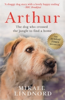 Arthur : The Dog Who Crossed the Jungle to Find a Home, Paperback Book