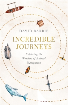 Incredible Journeys : Exploring the Wonders of Animal Navigation, Hardback Book