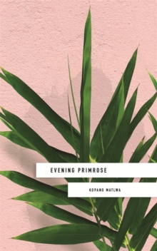 Evening Primrose: a heart-wrenching novel for our times, Hardback Book