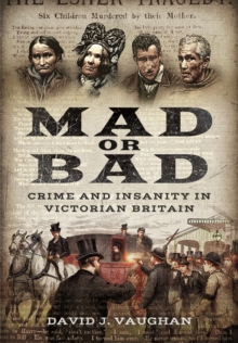 Mad or Bad: Crime and Insanity in Victorian Britain, Paperback / softback Book