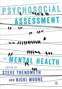Psychosocial Assessment in Mental Health, Paperback Book