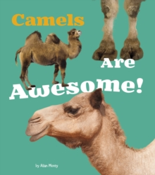Camels Are Awesome!, Hardback Book