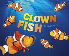 Clown Fish, Hardback Book