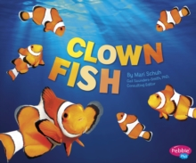 Clown Fish, Paperback Book