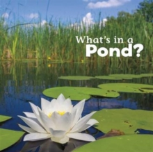 What's in a Pond?, Paperback / softback Book
