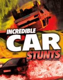 Wild Stunts Pack A of 4, Paperback Book