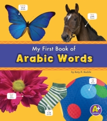 Arabic Words, Paperback Book