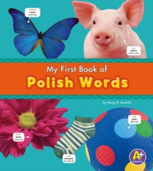 Polish Words, PDF eBook