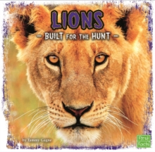 Lions : Built for the Hunt, Paperback / softback Book