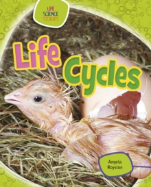 Life Cycles, Paperback / softback Book