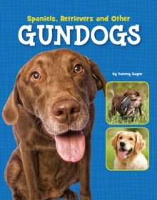 Spaniels, Retrievers and Other Gundogs, Hardback Book