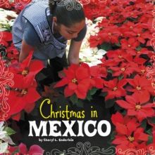 Christmas in Mexico, Paperback Book
