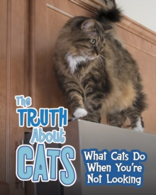 The Truth About Cats : What Cats Do When You're Not Looking, Hardback Book
