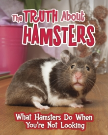The Truth About Hamsters : What Hamsters Do When You're Not Looking, Hardback Book