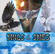 Kings of the Skies, Hardback Book