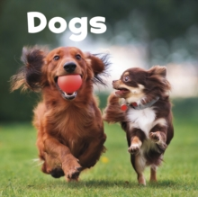 Dogs, Paperback / softback Book