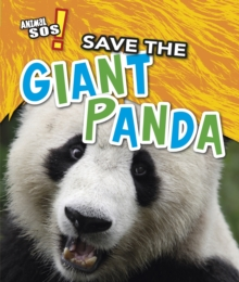 Save the Giant Panda, Paperback / softback Book