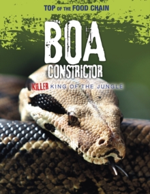 Boa Constrictor : Killer King of the Jungle, Paperback / softback Book