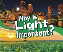 Why Is Light Important?, Hardback Book