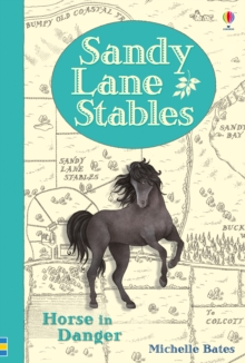 Sandy Lane Stables Horse in Danger, Hardback Book