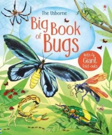 Big Book of Big Bugs, Hardback Book